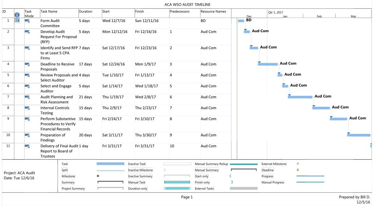 Preliminary Audit Schedule
